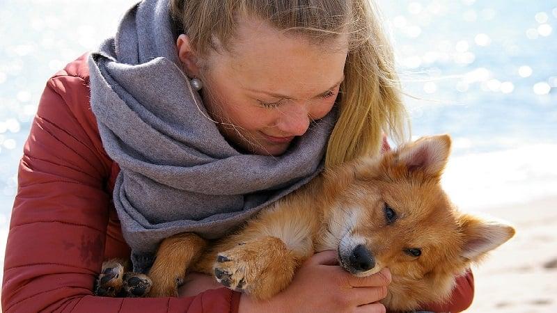 大切なペットと一緒に過ごすことでストレスが緩和される