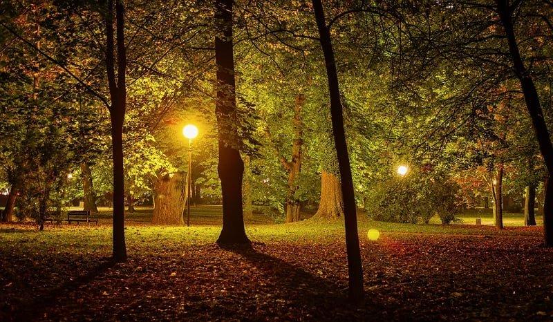 夜の散歩は非日常感を味わえる