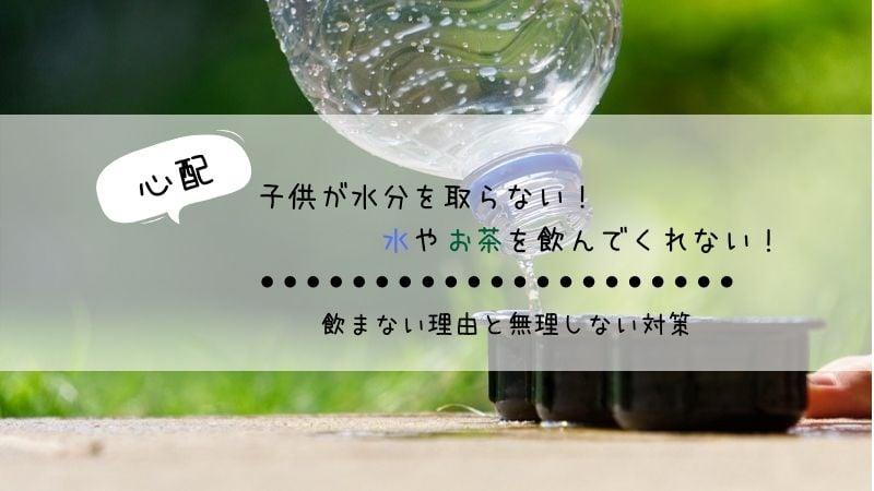 水分を取らない。水やお茶を飲まない子供への対処法