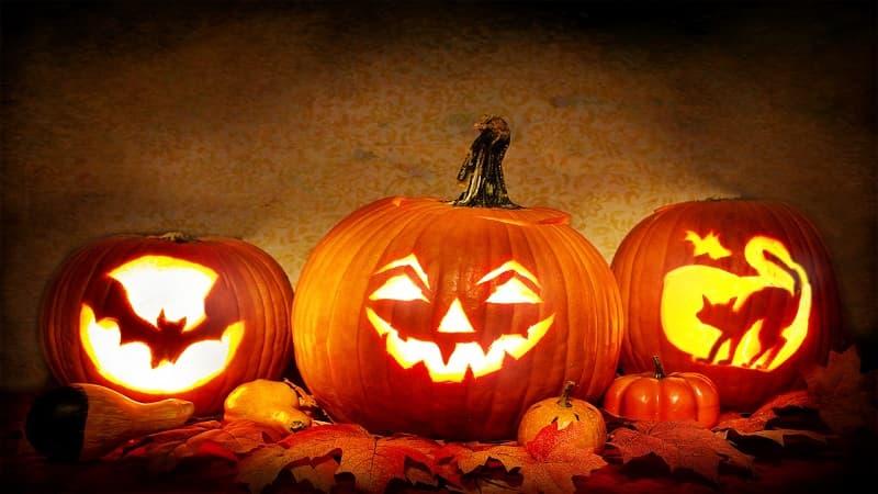 秋はお月見やハロウィンなど楽しいイベント盛り沢山