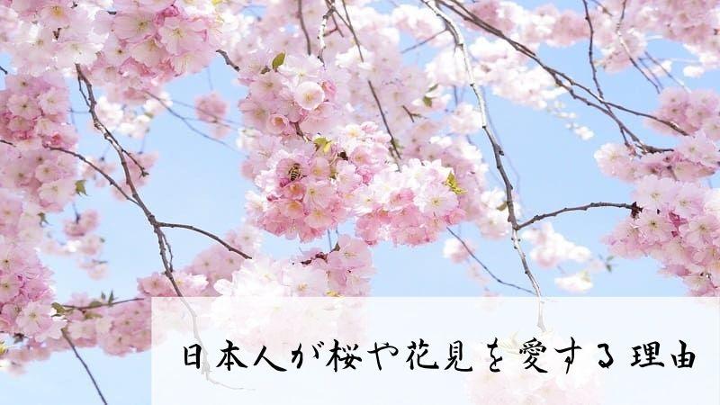 日本人が桜やお花見が好きすぎる5つの理由