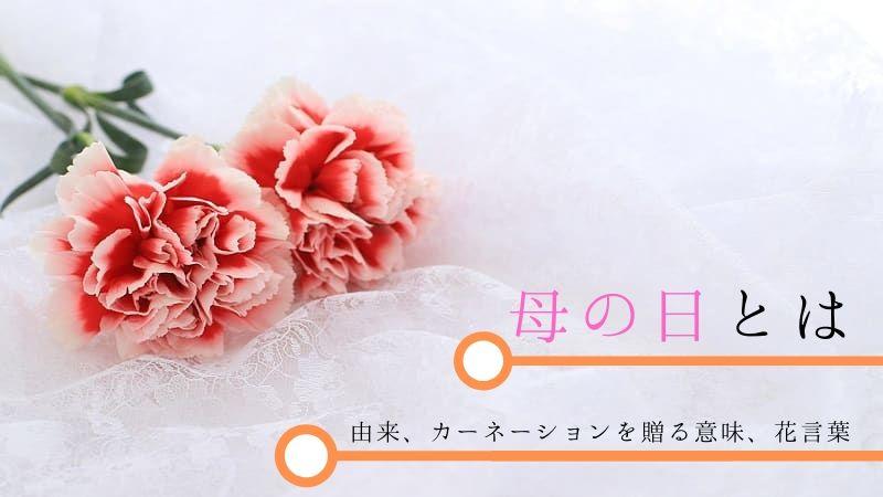 母の日とは?由来・カーネーションを贈る意味と花言葉