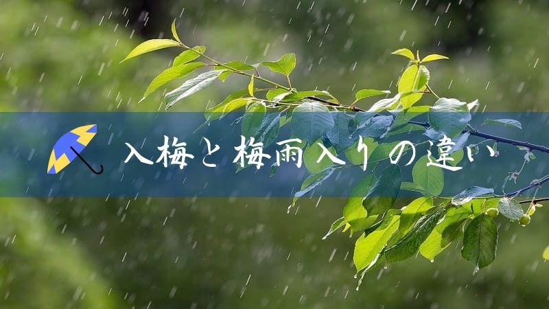 入梅と梅雨入りの違い+梅雨の語源