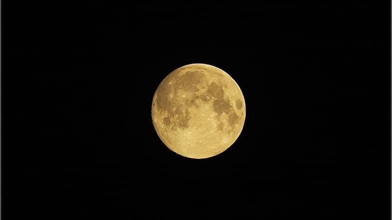 お月見はいつ?一年に何回するもの?