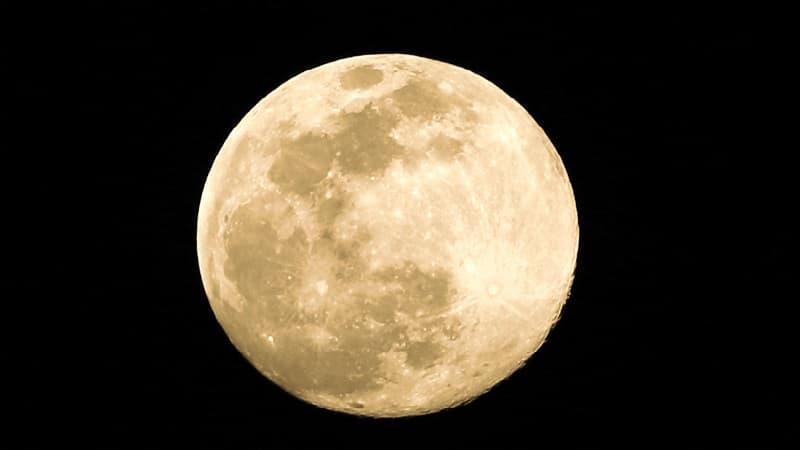 月にうさぎがいると言われている理由