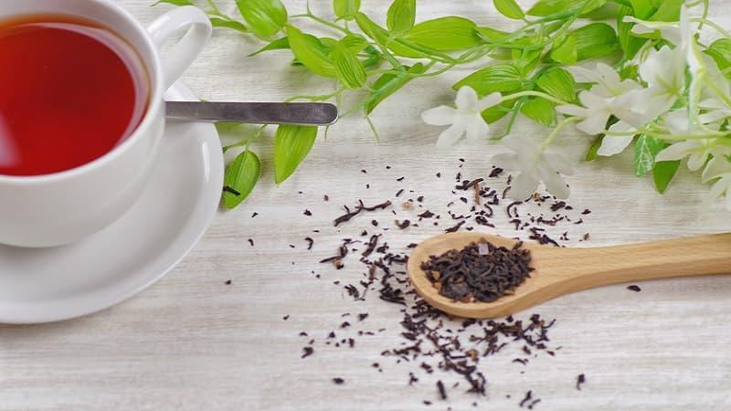 紅茶の日が制定された由来、11月1日の理由