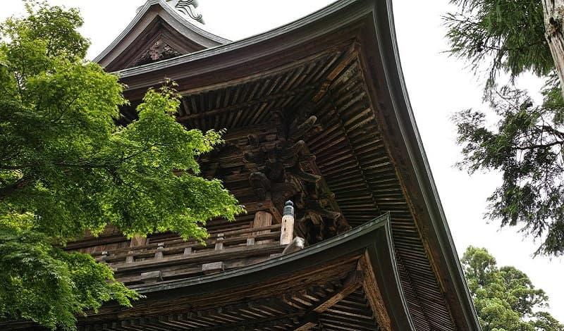 初詣の参拝場所は神社とお寺どちらに行っても問題ない